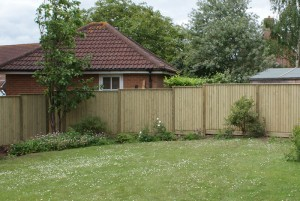 1.8m high Jacksons closeboard panels with capping