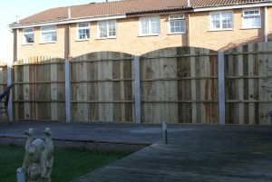 Convex closeboard garden fence panels with concrete posts (rear view)